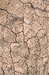 Cracked Mud Surface