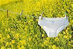 Underwear Hanging on Clothesline