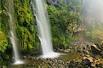 Dawson Falls, Egmont National Park, North Island, Nouvelle-Zélande