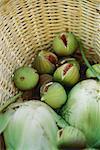 Figues et fenouil dans panier