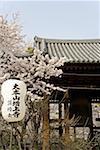 Quart de Japon, Tokyo, Shiba, Temple de Zojoji parc