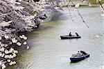 Japon, Tokyo, Chiyoda-Ku trimestre, Parc Kitanomaru, bateau sur le lac
