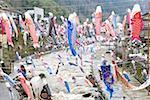 Le Japon, l'île de Kyushu, Oguni, festival des garçons, la carpe streamers