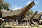Indonésie, Sulawesi, Tana Toraja, Kete Kesu, maisons Toraja