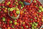 Indonesia, Sulawesi, Tana Toraja, Rantepao, market, peppers
