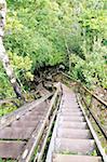 Guatemala, Tikal National Park, rainforest, stairs