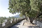 La Chine, près de Beijing, tombeaux de dynastie de Ming, la tombe de Changling, remparts