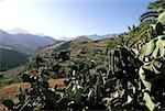 Espagne, Canaries, Gran Canaria, Santa Lucia de Tirajana