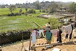 Xishuangbanna, Yunnan, la Chine, près de Damenglong, rizières