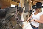 Femme alimentation cheval