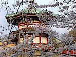 Japon, pagode de Tokyo, parc d'Ueno,