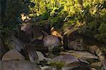 The Boulders, Babinda Creek, Babinda, Queensland, Australia