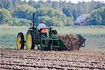 Farmer Harvesting Onions