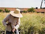 Personne avec chapeau de paille en champ agricole