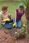 Granddaughter and Grandmother Gardening