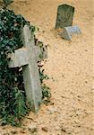 Overgrown tombstones in cemetery