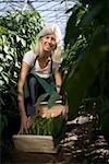 Femme accroupie en serre avec poivrons verts