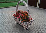 Geraniums in a decorative basket on a pavement