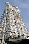 Low angle view of a temple, Tirupati, Tirumala Venkateswara Temple, Tirumala, Andhra Pradesh, India