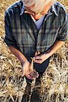 Farmer Examining Grain
