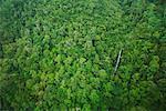 Aerial View of Waterfall, Mount Machincang, Langkawi Island, Malaysia