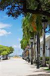 Lampposts and trees in front of a building, La Princesa, Old San Juan, San Juan, Puerto Rico