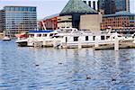 Boats moored at a harbor, National Aquarium, Inner Harbor, Baltimore, Maryland, USA