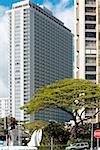Skyscrapers in a city, Honolulu, Oahu, Hawaii Islands, USA