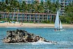 Sailboat in the sea, Nawiliwili Beach Park, Kauai, Hawaii Islands USA
