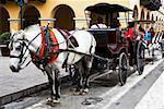 Horsedrawns in front of a building, Plaza-de-Armas, Lima, Peru