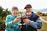Couple en vignoble, soulevant des verres de vin