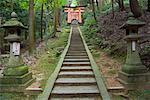 Escalier et portes Torii, Fushimi Inari Taisha Temple, Kyoto, Kansai, Honshu, Japon