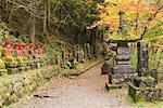 Statuen und Pathway, Narabjizo, Nikko, Honshu, Japan