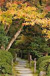 Jardin Zen, Nikko, Honshu, Japon
