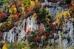 Sounkyo Gorge in Autumn, Daisetsuzan National Park, Hokkaido, Japan