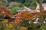 Engakuji Temple, Kamakura, Japan
