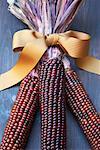 Getrockneten Mais mit Schleife gebunden
