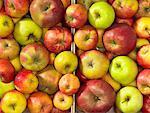 Différents types de pommes dans deux caisses (vue aérienne)