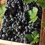 Raisins de table noir avec des feuilles dans un carton (gros plan)