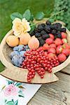 Prunes, les abricots et les fruits dans un bol en bois