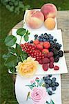 Frische Beeren auf Platte, Pfirsichen und Aprikosen daneben