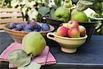Pflaumen, Äpfel und Quitten in Schalen auf Gartentisch