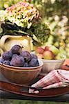 Pflaumen und Äpfel in Schalen auf Tablett auf Gartentisch