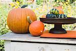 Assortiments de courges et citrouilles sur table de jardin (en plein air)