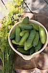 Pickling cucumbers in bowl, fresh dill beside it