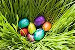 Oeufs en chocolat, emballées dans du papier de couleur, dans l'herbe