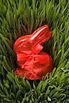 Lapin de Pâques au chocolat rouge en herbe