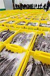 Fisch Markt, La Coruna, Galicien, Spanien