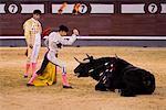 Bullfighting, Plaza de Toros de las Ventas, Madrid, Spain