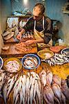 Fishmonger in Shop, Medina of Fez, Morocco